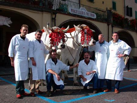 Die Rinderrasse Chianina – eine Delikatesse aus der Toskana