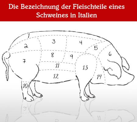 Teilstücke vom Schwein – Woher stammen Schinken, Lardo & Co?