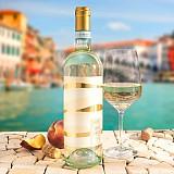 Pinot Grigio DOC - Weißwein